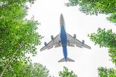 Passenger aircraft approach to landing above leaves, view from the of the forest trees. Royalty Free Stock Photos