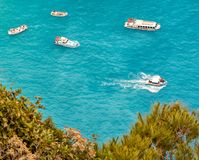 Passenger boats behind bushes at the shore Stock Images