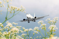 Passenger commercial airplane flies over flower fields at the airport. Stock Photos