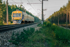 Passenger electric train. Moving through forest in Riga royalty free stock photo