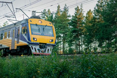 Passenger electric train. Moving through forest in Riga royalty free stock photos
