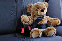 Passenger teddy Royalty Free Stock Photo