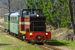Passenger train on old narrow-gauge railway. Stock Images