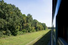 Passenger train rides through the forest. Royalty Free Stock Photography