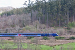 Passenger train speeding through forestry in Devon UK Stock Photos