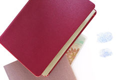 Passeports avec des empreintes digitales photo stock