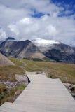 passerande s för glaciärlogan nationalpark Royaltyfri Fotografi