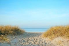 Passerande till och med gräs till havet Arkivbild
