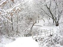 Passerella coperta di neve fotografie stock