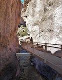 Passerella del canyon di Whitewater Fotografia Stock Libera da Diritti