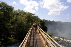 Passerella di Iguazu Immagine Stock