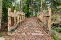 Passerella di legno Fotografie Stock