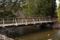 Passerella di legno nel parco che attraversa il fiume un giorno di molla Immagine Stock