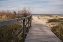Passerella di legno nelle dune Fotografia Stock