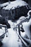 Passerella di legno di Snowy nel bello paesaggio di inverno in bianco e nero in alpi julian, Slovenia Immagine Stock Libera da Diritti
