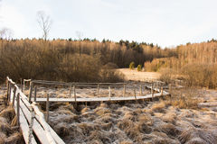 Passerella di legno sopra la palude congelata Paesaggio di inverno Fotografia Stock