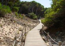 Passerella di legno sopra le dune di sabbia Fotografia Stock