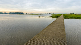 Passerella di legno stretta sopra l'acqua di una riserva naturale fotografia stock libera da diritti