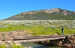 Passerella Lamar River fotografie stock libere da diritti