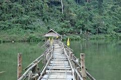 Passerelle à la jungle profonde photographie stock libre de droits