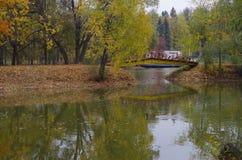 Passerelle à travers l'étang Image stock
