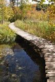 Passerelle à travers le lac photographie stock
