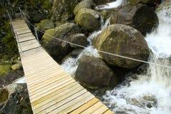 Passerelle à travers un fleuve photographie stock libre de droits