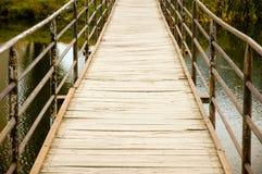 Passerelle au-dessus de fleuve Photographie stock libre de droits