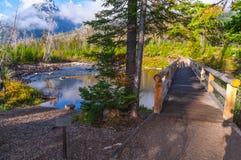 Passerelle au-dessus de lac string photos libres de droits