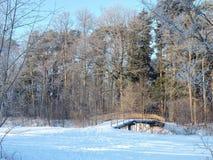 Passerelle au-dessus de rivière de Sysa en hiver, Lithuanie Photographie stock libre de droits