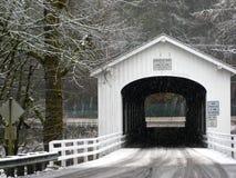 Passerelle couverte de neige Photographie stock