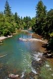Passerelle couverte - fleuve images libres de droits