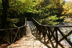 Passerelle d'automne photographie stock