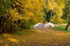 Passerelle d'or d'automne Images stock