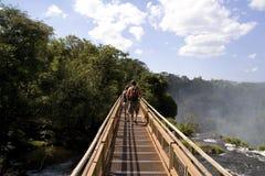 Passerelle d'Iguazu Image stock