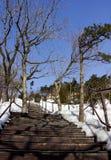 Passerelle dans la neige Images libres de droits