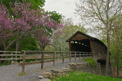 Passerelle de bosse dans Covington, la Virginie. Images stock