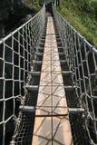 Passerelle de corde Photos libres de droits