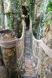 Passerelle de corde de jungle Photo libre de droits