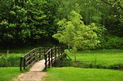 Passerelle de forêt Photographie stock
