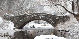 Passerelle de Gapstow - Central Park Photographie stock libre de droits