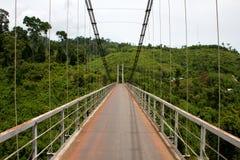 Passerelle de jungle Image libre de droits