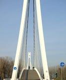 Passerelle de la suspension Bridge Images stock