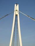 Passerelle de la suspension Bridge Photo libre de droits
