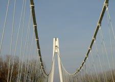 Passerelle de la suspension Bridge Photo stock