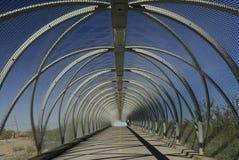 Passerelle de serpent de Tucson image libre de droits