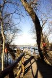 Passerelle en bois Photo stock