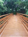 Passerelle en bois Photo stock