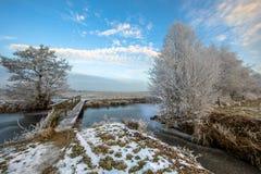 Passerelle en bois au-dessus de canal congelé dans Drenthe Photos stock