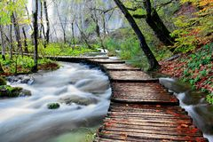 Passerelle en bois au-dessus de fleuve Image stock